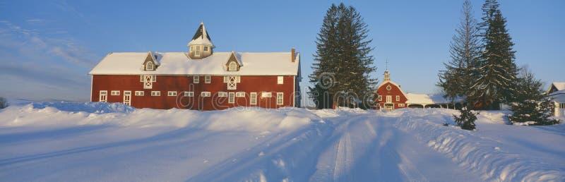 Vinter i New England royaltyfri foto