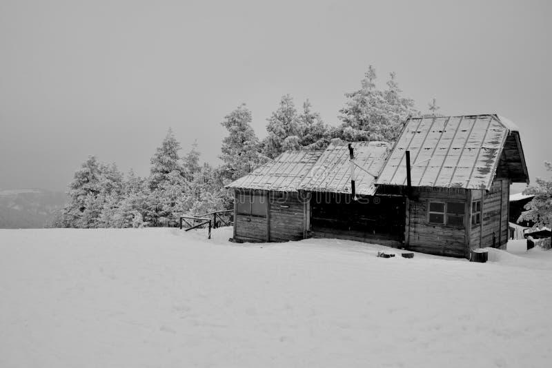 Vinter i Serbien Zlatibor 2017 arkivfoton