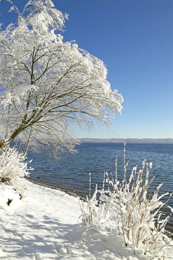 Vinter i Tutzing på sjön Starnberg, Tyskland arkivbild