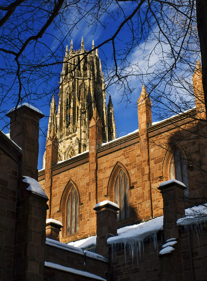 Vinter i Yale arkivfoto