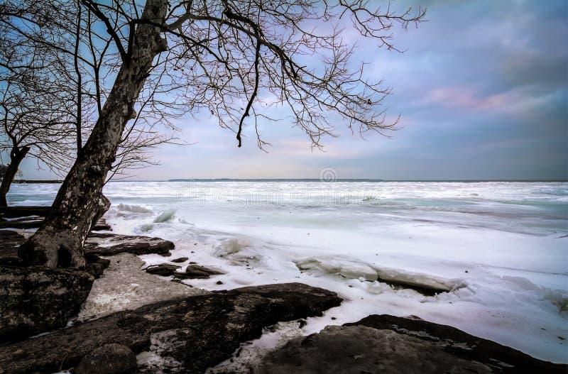 Vinter Lake Erie arkivbilder