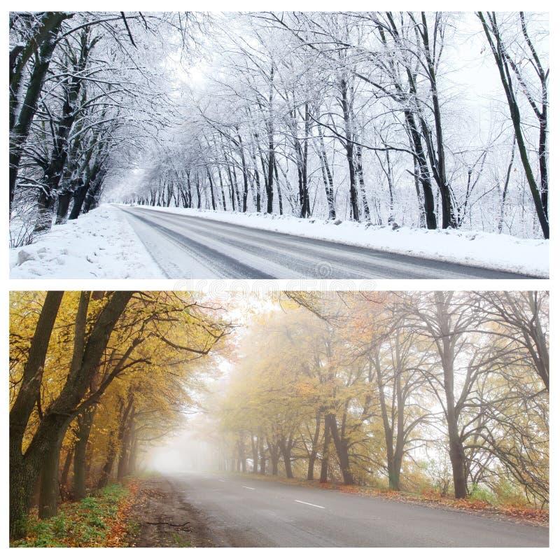 Vinter- och höstpanorama av skogvägen. arkivbilder