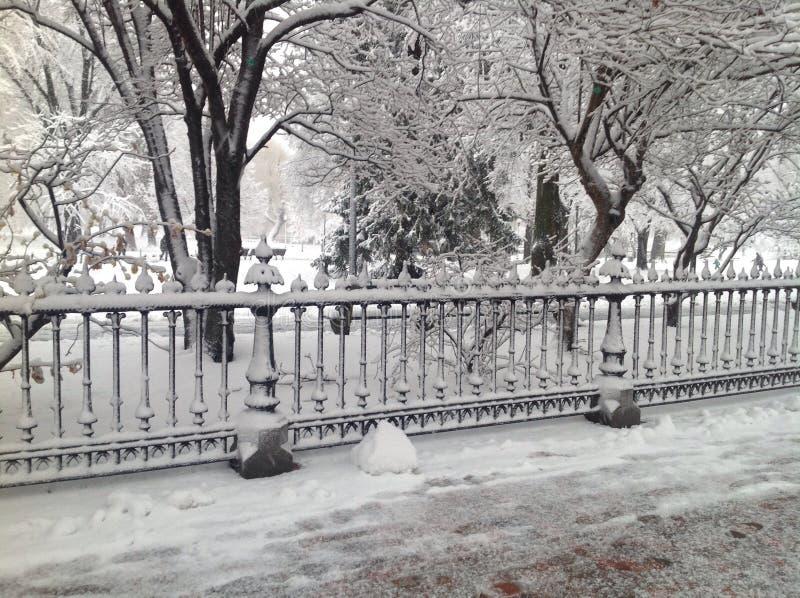 Vinter på den offentliga trädgården royaltyfria bilder