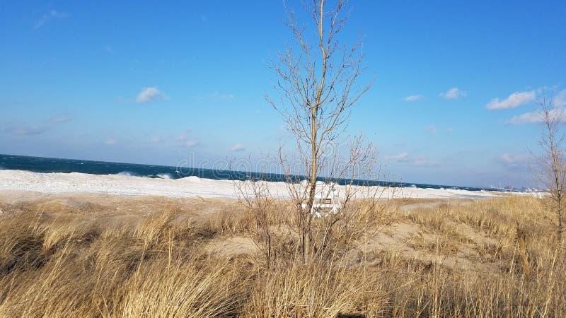 Vinter på Lake Michigan arkivfoto