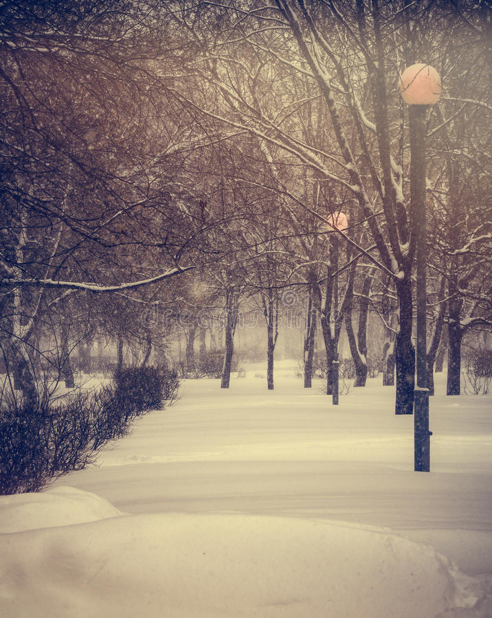 Vinter Snöfall i staden royaltyfri foto