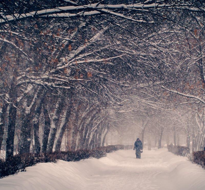 Vinter Snöfall i staden fotografering för bildbyråer