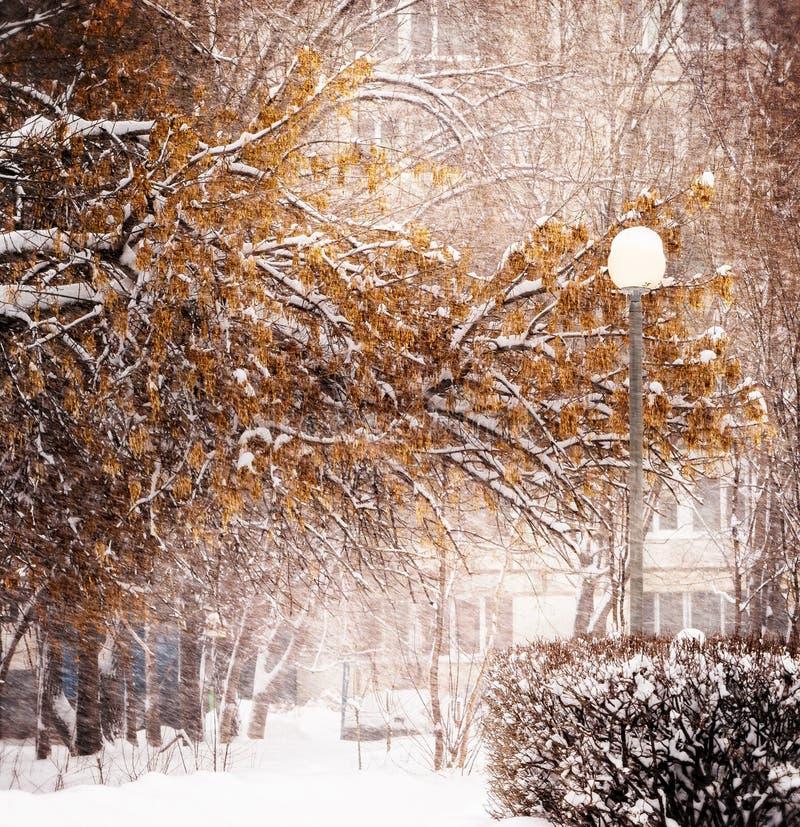 Vinter Snöfall i staden royaltyfria foton