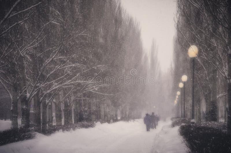 Vinter Snöfall i staden royaltyfria bilder