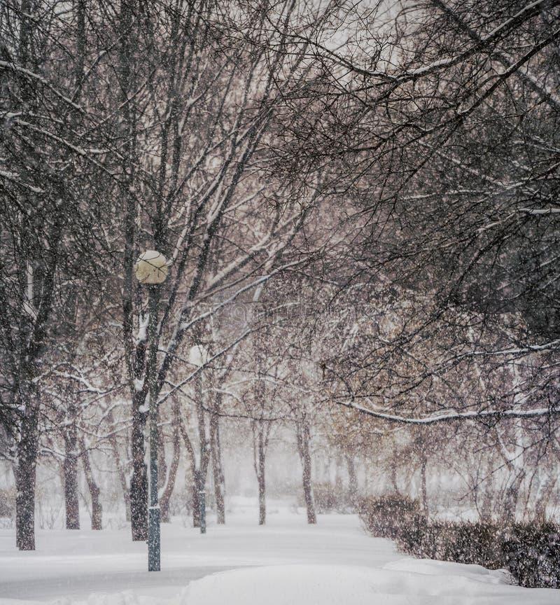 Vinter Snöfall i staden arkivbild