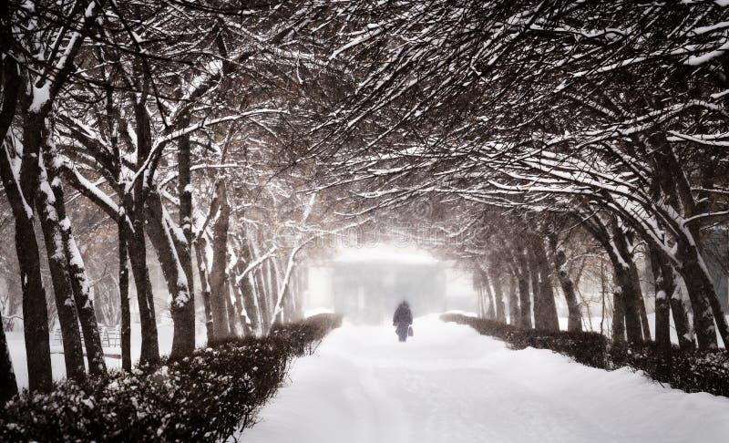 Vinter Snöfall i staden arkivfoton