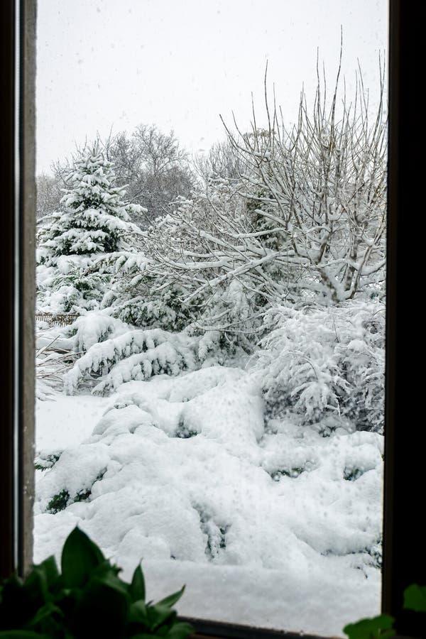 Vinter snöfall i trädgården Snö-täckt trädgård arkivbild