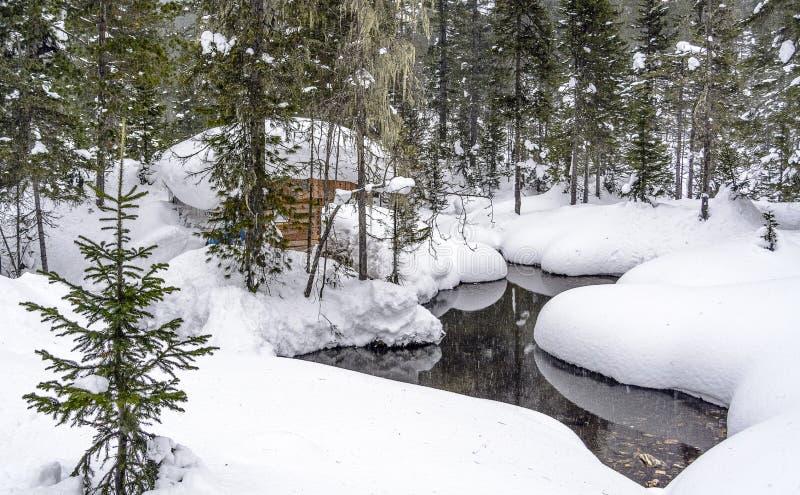 Vinter Taiga förlägga i barack nära ström royaltyfria bilder