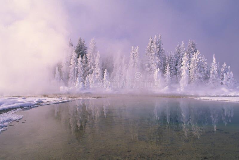 vinter yellowstone royaltyfria bilder