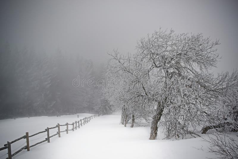 Vinterbana i de jätte- bergen royaltyfri bild