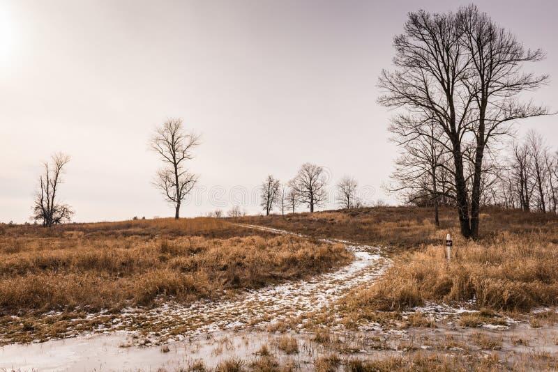 Download Vinterbana - Saratoga Springs, NY Fotografering för Bildbyråer - Bild av walkway, attractor: 106829125