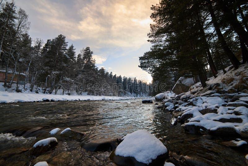 Vinterbergflod med snö och grönt vatten på solnedgången Bolshoy Zelenchuk flod Ryssland royaltyfria bilder