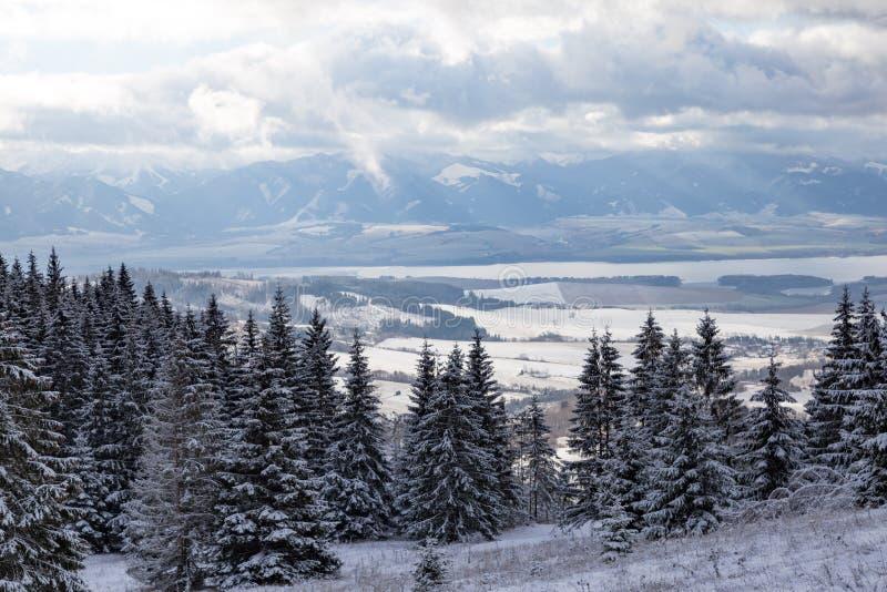 Vinterberglandskap i Tatras slovakia royaltyfri fotografi