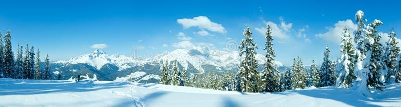 Vinterbergpanorama med snöig träd (Filzmoos, Österrike) arkivbild