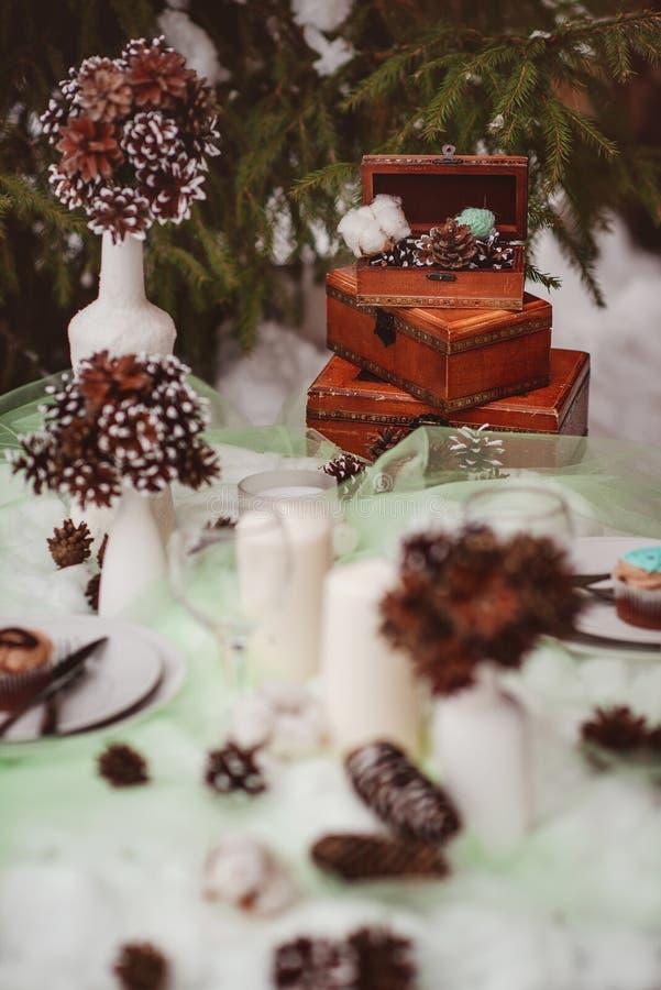 Vinterbrölloptabell royaltyfri bild