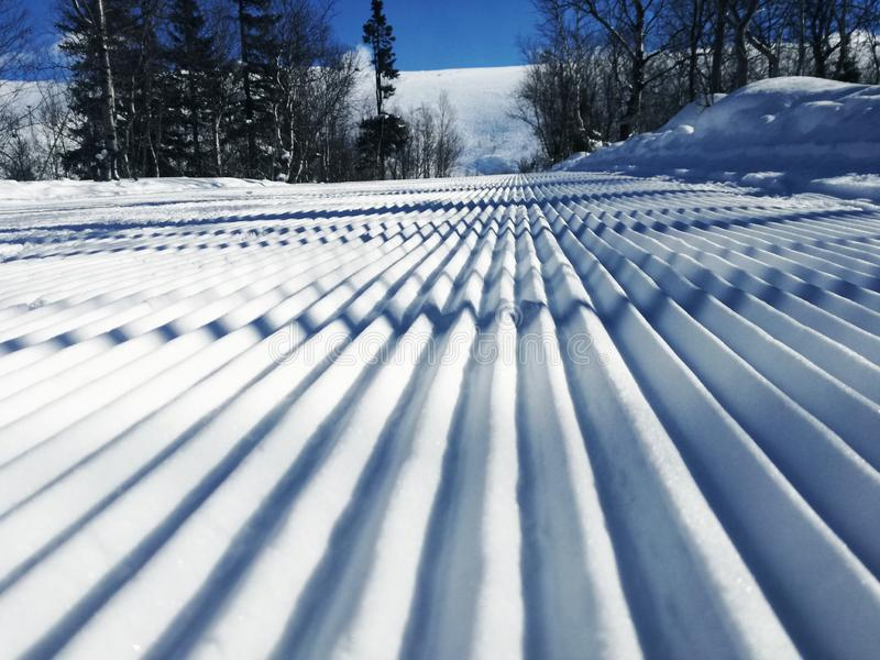 Vinterdag på skidaspåret arkivbild