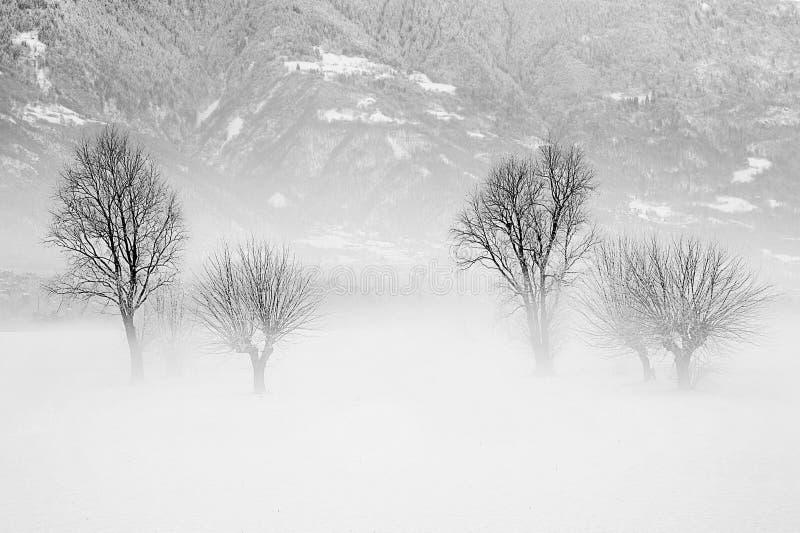 Vinterensamhet royaltyfria bilder