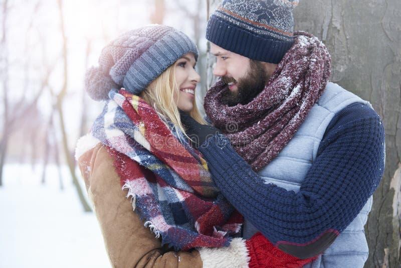 Vinterförälskelse royaltyfria bilder