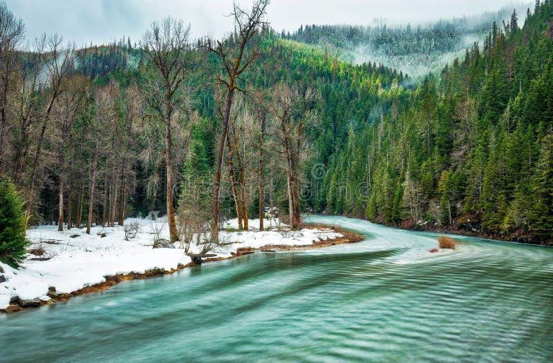 Vinterflyttningar på och vårtarts till visas på bankerna av den Coeur D 'Alene floden royaltyfria bilder