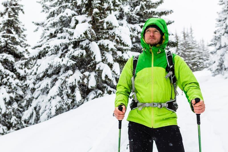 Vinterfotvandrare i vita snöig trän som går med att fotvandra pinnar och royaltyfria bilder