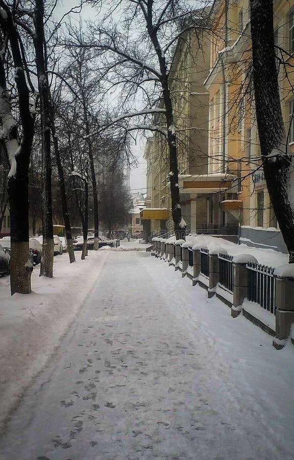 Vintergata i Ryssland royaltyfri bild