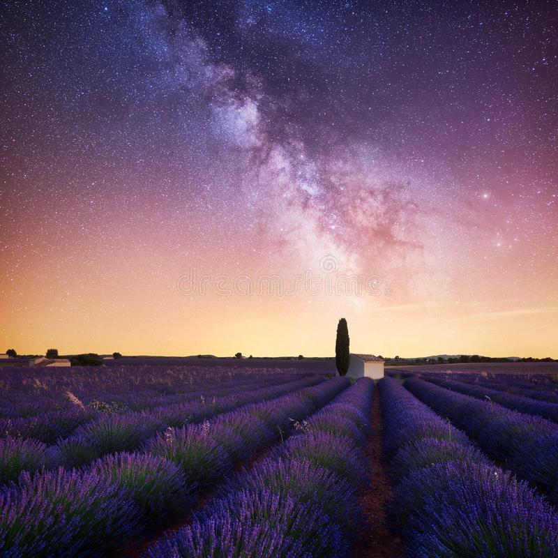 Vintergatan över lavendelfält i Provence Frankrike royaltyfri fotografi