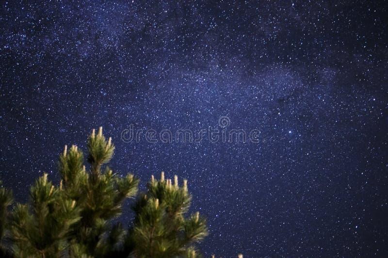 Vintergatan royaltyfri foto