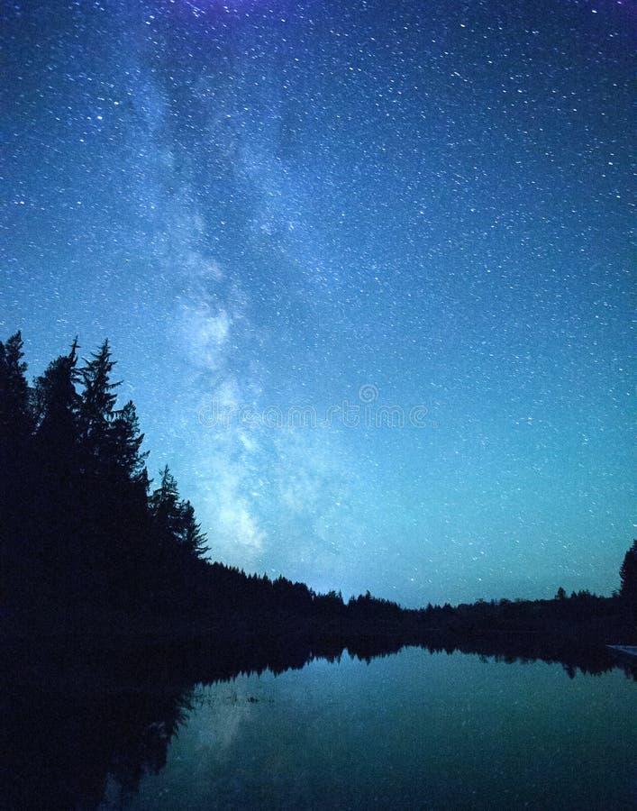 Vintergatanstjärnor över skog och sjön royaltyfri fotografi