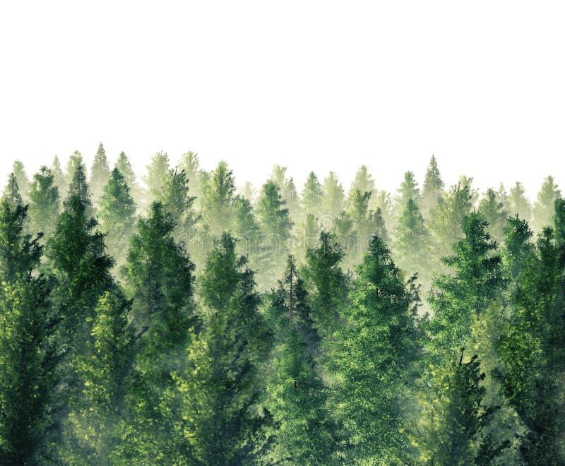 vintergrön skog royaltyfri illustrationer
