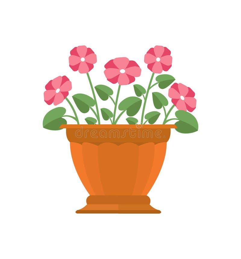 Vintergröna blomma i krukavektorillustration royaltyfri illustrationer