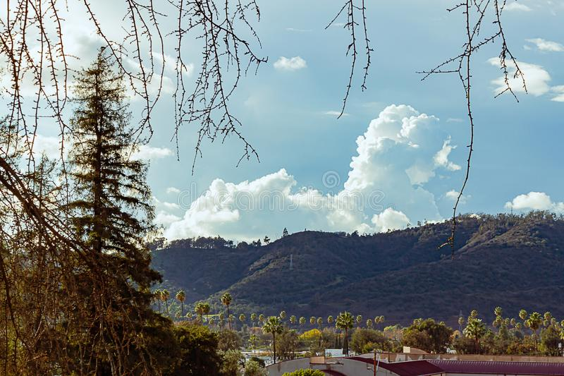 Vintergröna träd och gömma i handflatan med elyseiska stadstak parkerar kullar med moln arkivbild