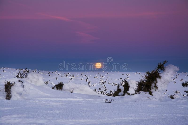 Vintergryning över de Sudeten bergen, Karkonosze, Polen royaltyfria bilder