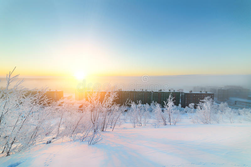 Vintergryning och den frostiga dimman arkivbild