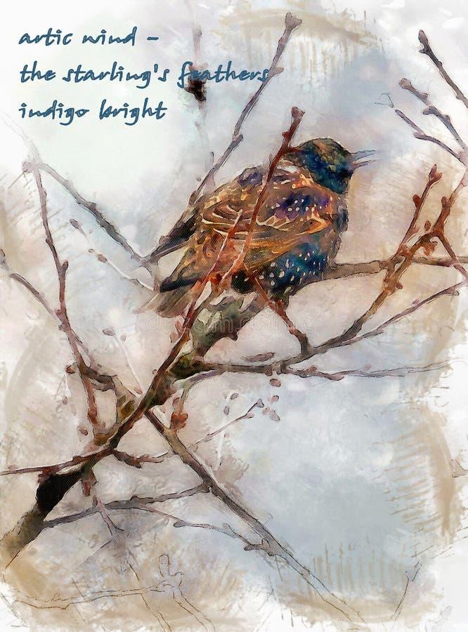 Vinterindigoblått royaltyfri fotografi