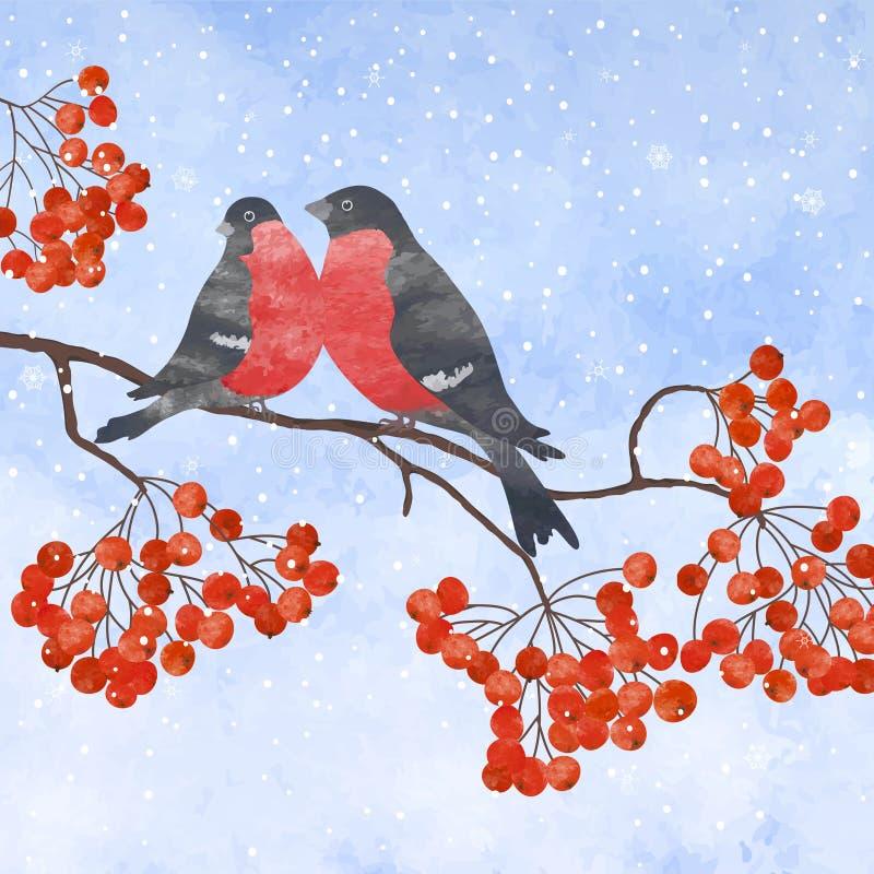 Vinterkort med domherre vektor illustrationer