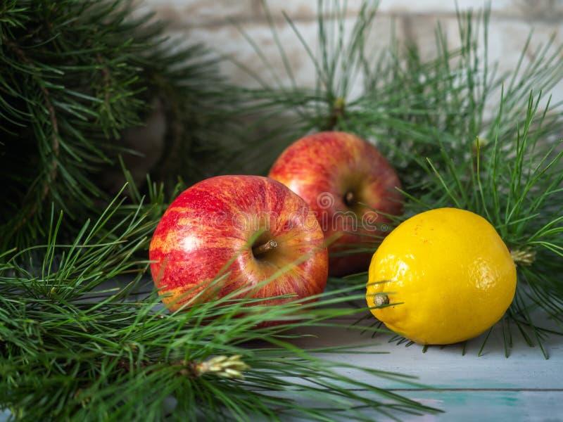 Vinterkortet med stora röda äpplen och citronen bland sörjer filialer på turkosen träbakgrund, skott från nära område royaltyfri bild
