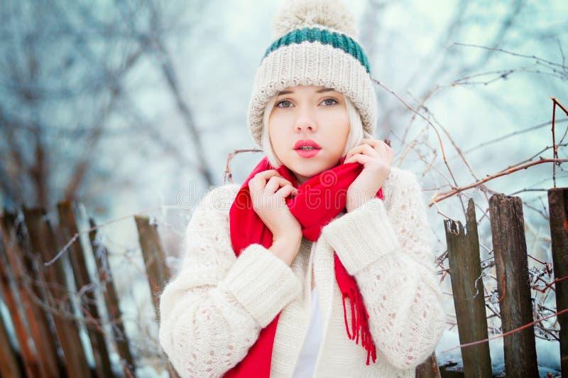 Vinterkvinnastående royaltyfri bild