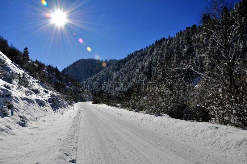 Vinterlandscepfoto arkivfoto