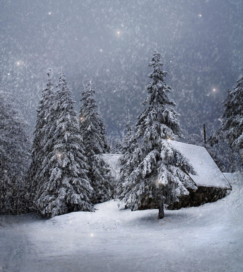 Vinterlandskap royaltyfri bild