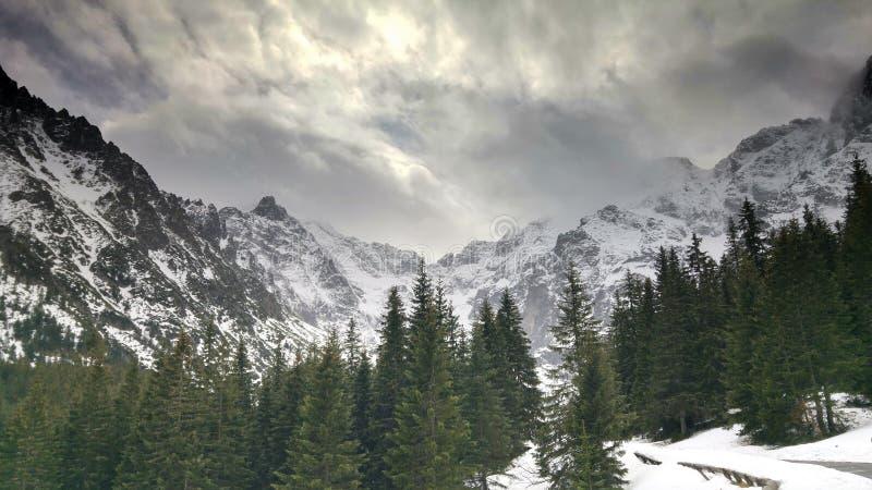 Vinterlandskap av de höga Tatra bergen i Polen royaltyfria bilder