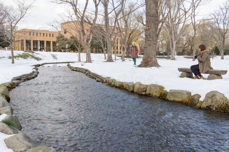 Vinterlandskap av det Hokkaido universitetet royaltyfri foto