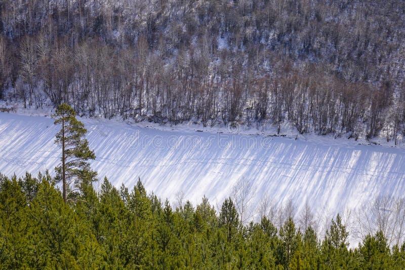 Vinterlandskap av Heilongjiang, Kina royaltyfria bilder