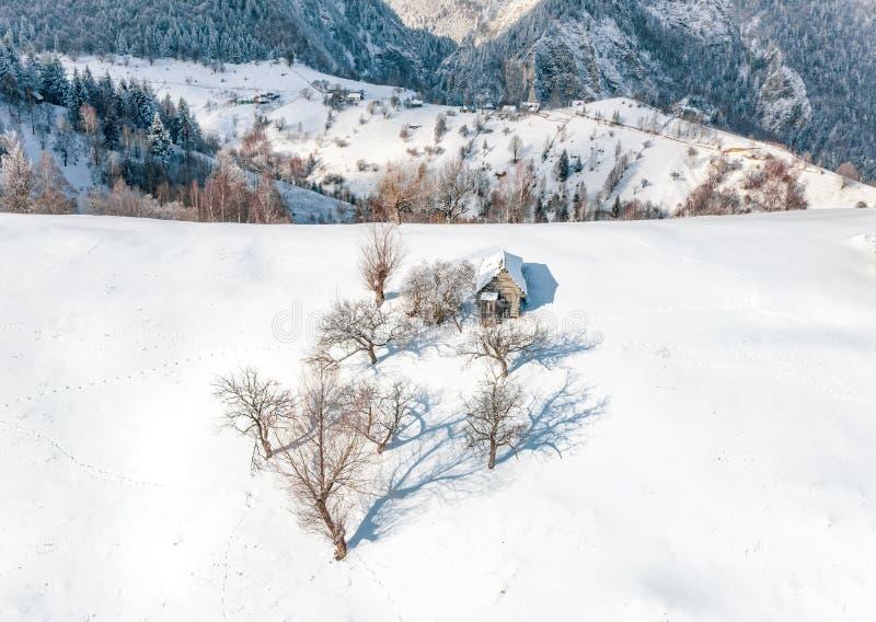 Vinterlandskap i de Carpathian bergen med det traditionella bondaktiga huset och träd som täckas i snö arkivfoton