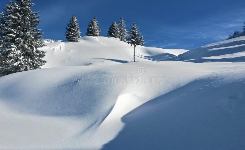 Vinterlandskap i de franska fj?ll?ngarna arkivfoton