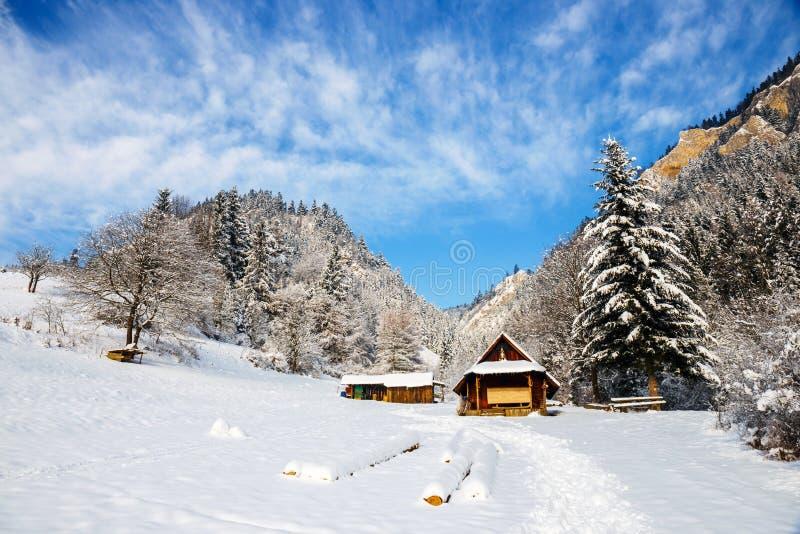 Vinterlandskap i Pieniny berg, Polen royaltyfri bild