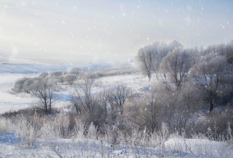 Vinterlandskap i snönatur arkivfoto